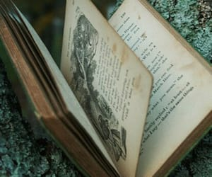 book, alice in wonderland, and old image