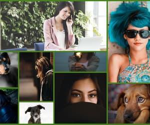 blog, blogowanie, and film image