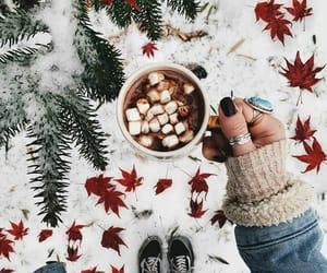 christmas, holidays, and leaves image