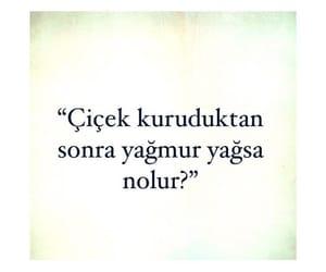 repost, alıntı, and türkçe sözler image
