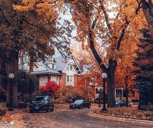 autumn, october, and orange image