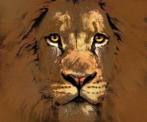 animal, animals, and art image