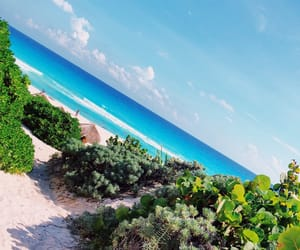 beach, trip, and traveler image