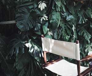 chair, white, and green image