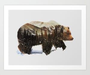art print, bear, and winter image