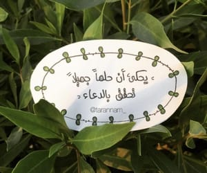 Image by Areej
