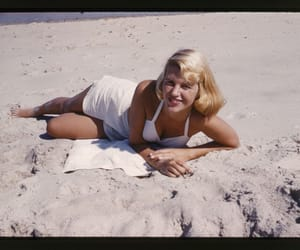 ariel, sylvia plath, and the bell jar image