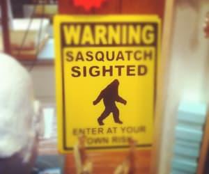 sasquatch, washington, and seattle image