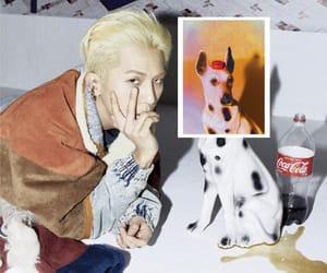 kpop, mino, and winner image