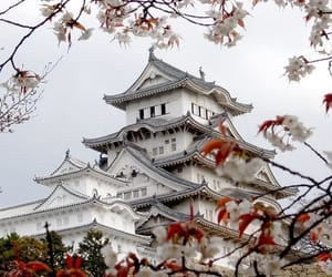 castle, japan, and white image