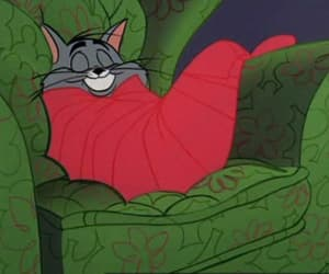 cartoon, cat, and Tom image