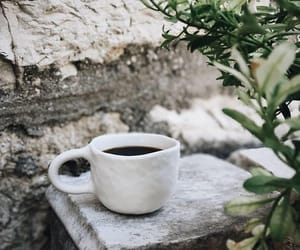 coffee and nature image