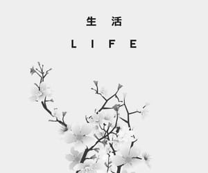 wallpaper, life, and white image
