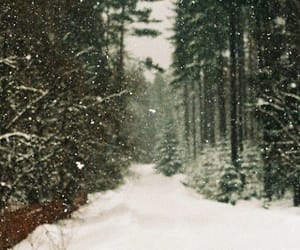 snow and winter is here image