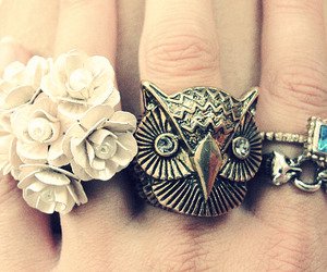 owl, flowers, and rings image