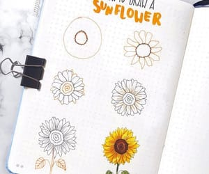 drawing, sunflower, and insperation image