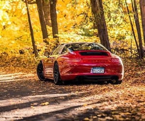 autumn, luxury, and cool image