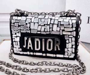 dior and purse image