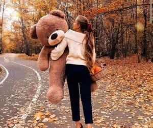 autumn, Dream, and bear image
