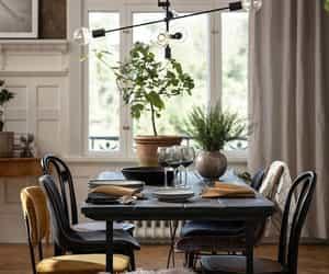 decor, design, and diningroom image