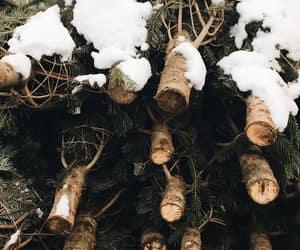 snow, tree, and christmas image