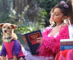 ariana grande, thank u next, and legally blonde image