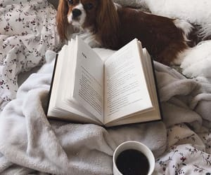 aesthetic, book, and classy image