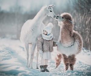 alpaca, child, and snow image