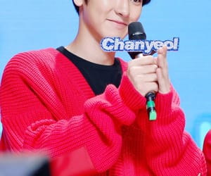 exo, kpop, and pcy image