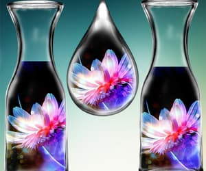 bottle, flower, and lotus image