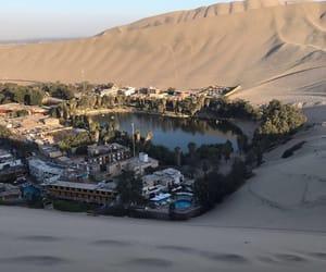 tropical, desert, and theme image