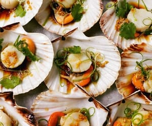 delicious, food, and seafood image