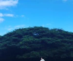 beautiful, exo, and hawaii image