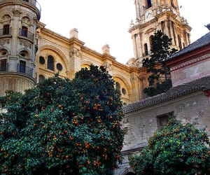 Malaga, spain, and travel image