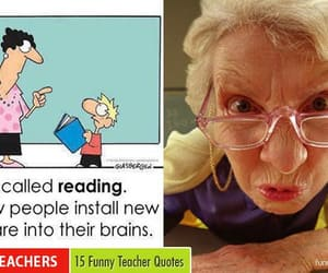 funny, funny pictures, and funny teacher quotes image