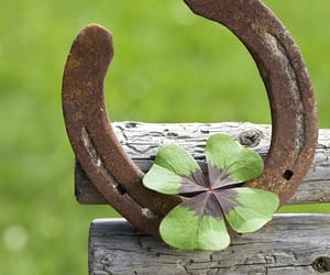 life, luck, and Powerful image