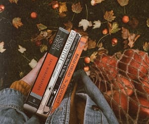 book, autumn, and apple image