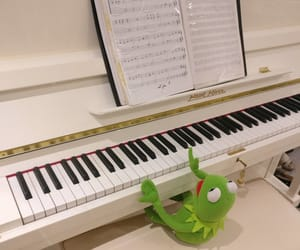 frog, funny, and green image