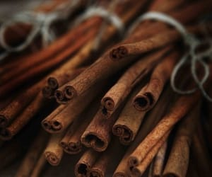 Cinnamon, autumn, and brown image