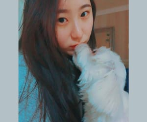 pets, chaeyeon, and 180926 image