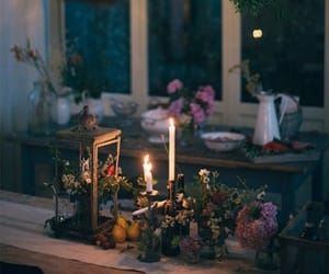 candle and plants image