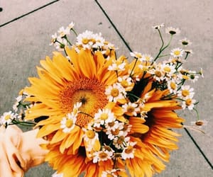 article, flowers, and we heart it image