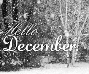 december, gif, and hello image