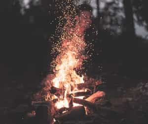 fire, sparks, and woods image