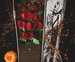 autumn, flowers, and nightmare before christmas image