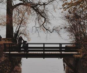 bridge, lake, and photography image