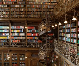 books, bibliotecas, and libraries image