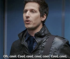 andy samberg, gif, and lol image