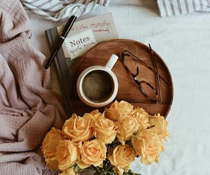 book, flowers, and winter image