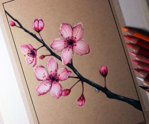 art, beautiful, and cherry blossoms image